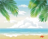 Tropical Beach With Palm Leaf