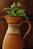 Vintage hand thrown pottery pitcher with parsley against rustic dark wood background.  Low key still