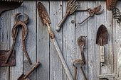 foto of yesteryear  - A collection of antique rusted old garden and ranch tools hang on a weathered shed wall in an artistic collage - JPG