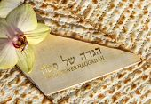 pic of passover  - spring holiday of Passover and its attributes - JPG