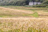 Meadows At Derrynane House