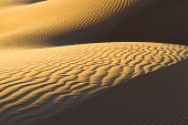 Sandy waves in the Sahara Desert. Background for your design.