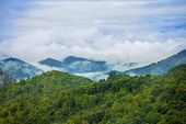 fog over the great smoky mountains, north carolina