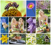 Montage of a mother and young daughter gardening in a beautiful spring garden, planting pots togethe