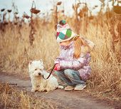 picture of westie  - little  girl with her dog breed White Terrier walking in a field in autumn - JPG