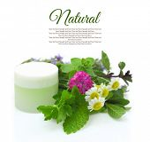 Cosmetic cream with herbs on white background