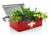 stock photo of emergency treatment  - Fresh herbs in first aid kit - JPG