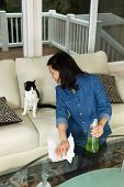 Mature Woman Smiling At Her Cat While Cleaning The Family Room Table