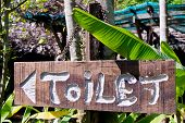 Wood Toilet Sign