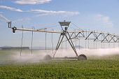 image of desert christmas  - Central pivot irrigation system watering an alfalfa field in the Christmas Valley area of central Oregon - JPG