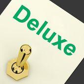 Deluxe Switch Shows Premium Luxurious Luxury