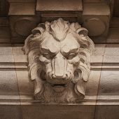 Muzzle Ferocious Lion Carved In Stone