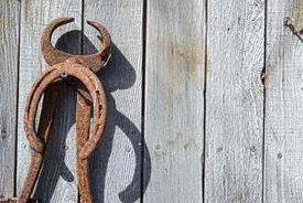 stock photo of yesteryear  - A rusty old horseshoe and farrier trim tool hang on a weathered barn wall a memory of days gone by - JPG