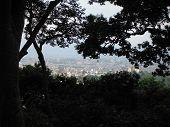 Kathmandu Seen From Height Through Trees