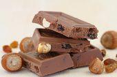 Milk chocolate with hazelnuts and sultanas, close up