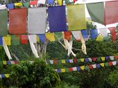 Traditional Nepali Prayer Flags At Lumbini
