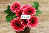 Get well card with dark pink gerbera daisies