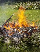 Garbage In Fire, Garden Illegal Burn Refuse.