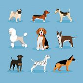 stock photo of dog poop  - vector icons dogs set isolated on blue background - JPG