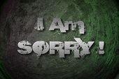 I Am Sorry Concept