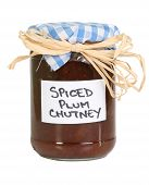 Homemade Chutney On White
