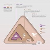 Modern Eco Concept Triangle Infographic Elements