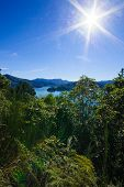 Queen Charlotte Drive