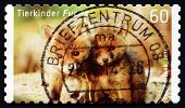 Postage Stamp Germany 2014 Red Fox, Baby Animal