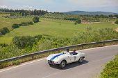 Arnolt Bristol Bolide (1954) Runs In Mille Miglia 2014
