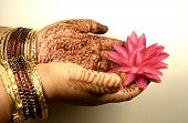 Decorated Hands With Mehandi