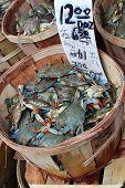Basket of Crab