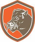 Wild Boar Razorback Head Side Shield Retro