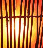 a bamboo lamp