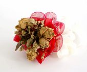 Isolated Dried Rose On White Background