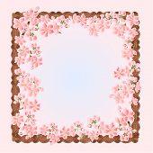 Sakura Flowers Spring Frame Vector