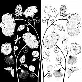 Black And White Floral Composition