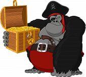 Monkey harsh pirate