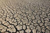 stock photo of drought  - Rice Field to have a Drought the Soil is Crack - JPG