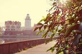 Kaliningrad street Morning