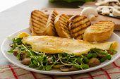 Mushroom And Microgreen Omelet