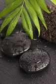 pic of pumice stone  - Green leaf on spa stone on wet black surface - JPG