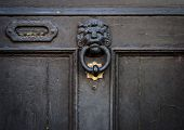 lion head door knocker and letterbox on door