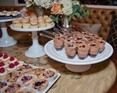 picture of catering  - Catered treats keep the party guests happy and full - JPG