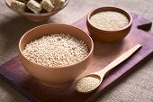 stock photo of quinoa  - Popped white quinoa  - JPG