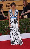 LOS ANGELES - JAN 25:  Rashida Jones arrives to the 21st Annual Screen Actors Guild Awards  on January 25, 2015 in Los Angeles, CA