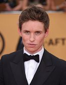 LOS ANGELES - JAN 25:  Eddie Redmayne arrives to the 21st Annual Screen Actors Guild Awards  on January 25, 2015 in Los Angeles, CA