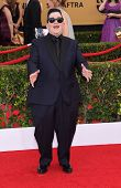 LOS ANGELES - JAN 25:  Lea DeLaria arrives to the 21st Annual Screen Actors Guild Awards  on January 25, 2015 in Los Angeles, CA