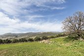 stock photo of fascinating  - The Galilee is a mountainous region in Israel - JPG