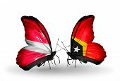 Two Butterflies With Flags On Wings As Symbol Of Relations Latvia And East Timor