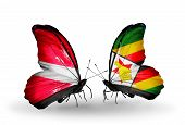 Two Butterflies With Flags On Wings As Symbol Of Relations Latvia And Zimbabwe